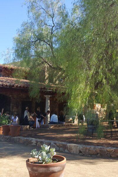 Cavas del Mogor vinas in Baja California