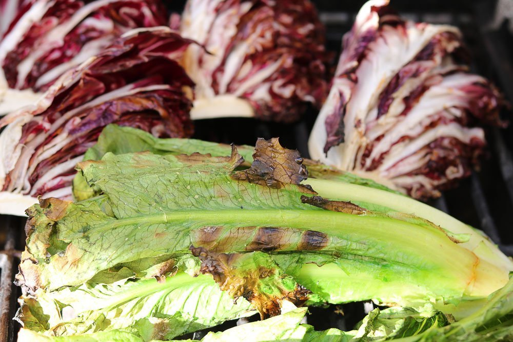 grilled lettuce and radicchio